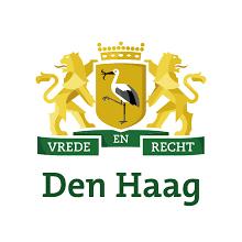 Sloopauto Den Haag