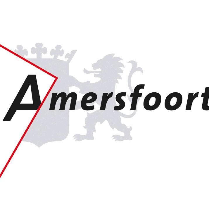 sloopauto Amersfoort